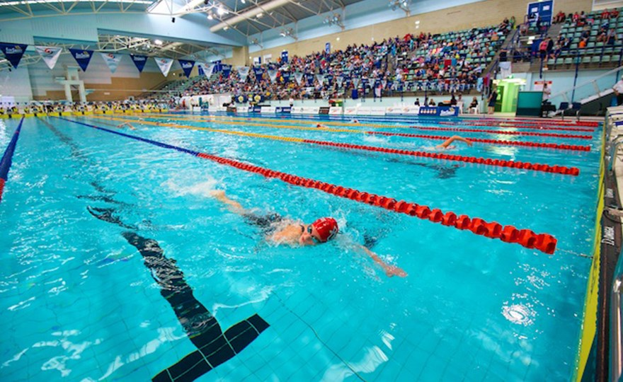 Swimmers underwater in lanes