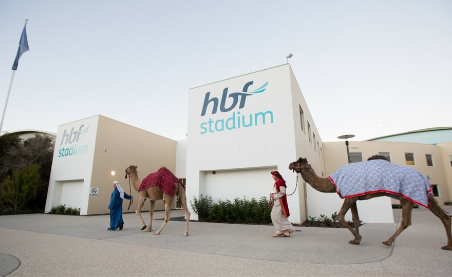 camels at EY Ball HBF Stadium